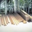 Sierra ModellSport - Placa lemn balsa 2 x 100 x 1000 mm